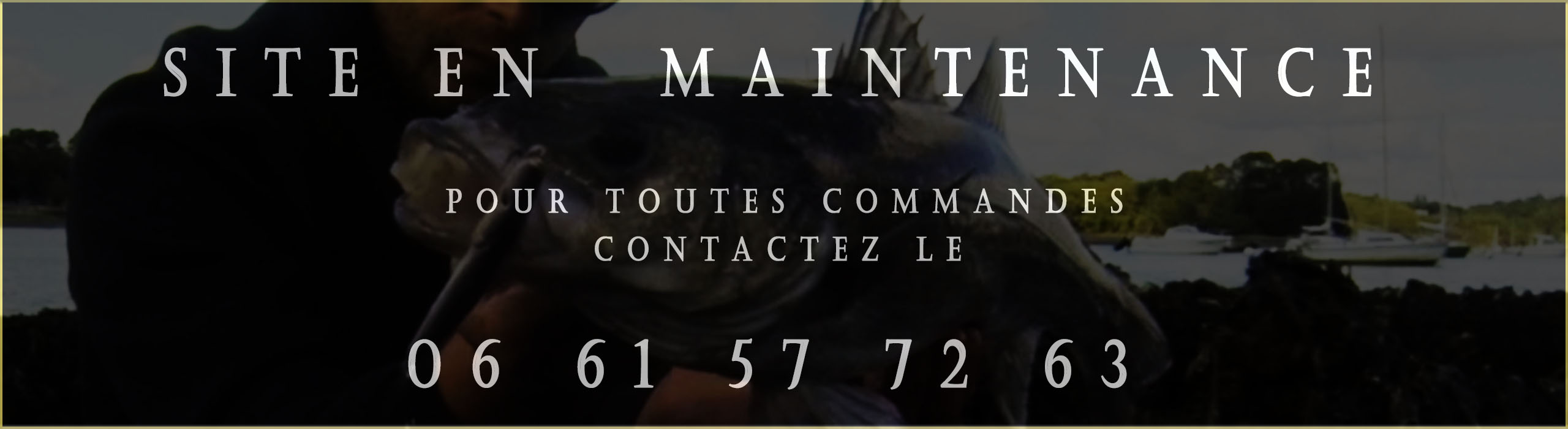 site_en_maintenace